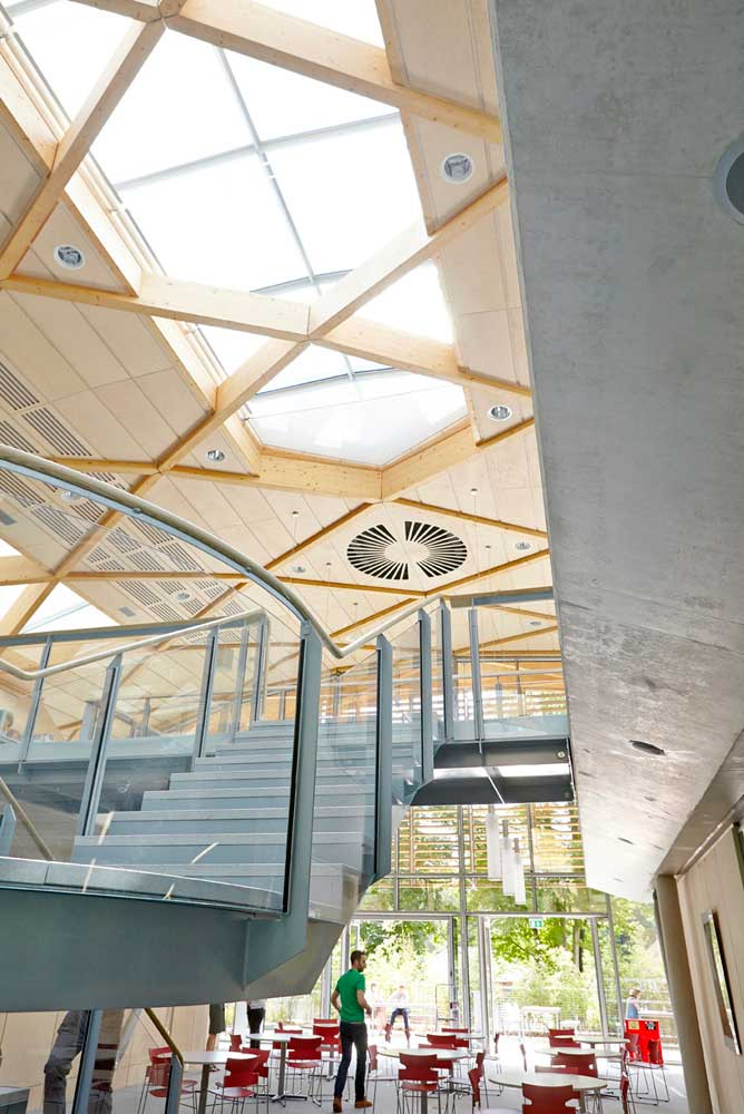 the living planet centre daylight office space in WWF building by Airey Spaces
