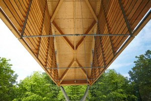 wooden exterior of the living planet centre WWF building by Airey Spaces