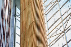 glass atrium and wooden cladding in St Thomas hospital by Airey Spaces