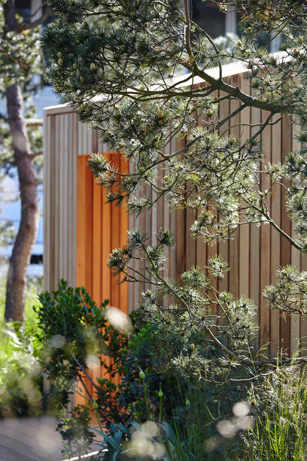 wooden structure in garden at chelsea flower show by airey spaces