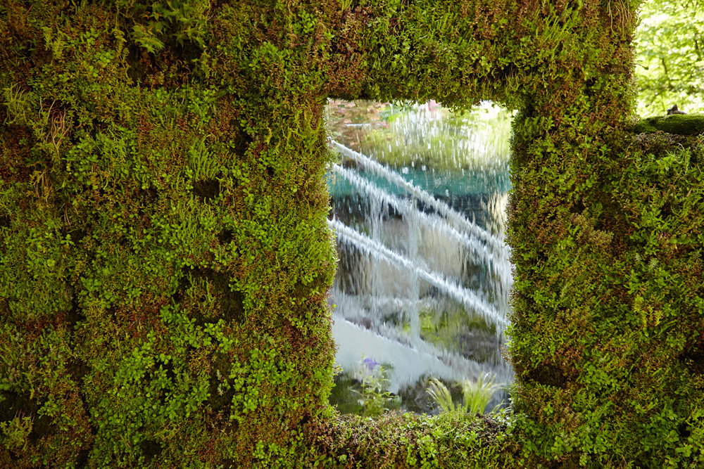 moss wall and glass window with water and staircase by airey spaces
