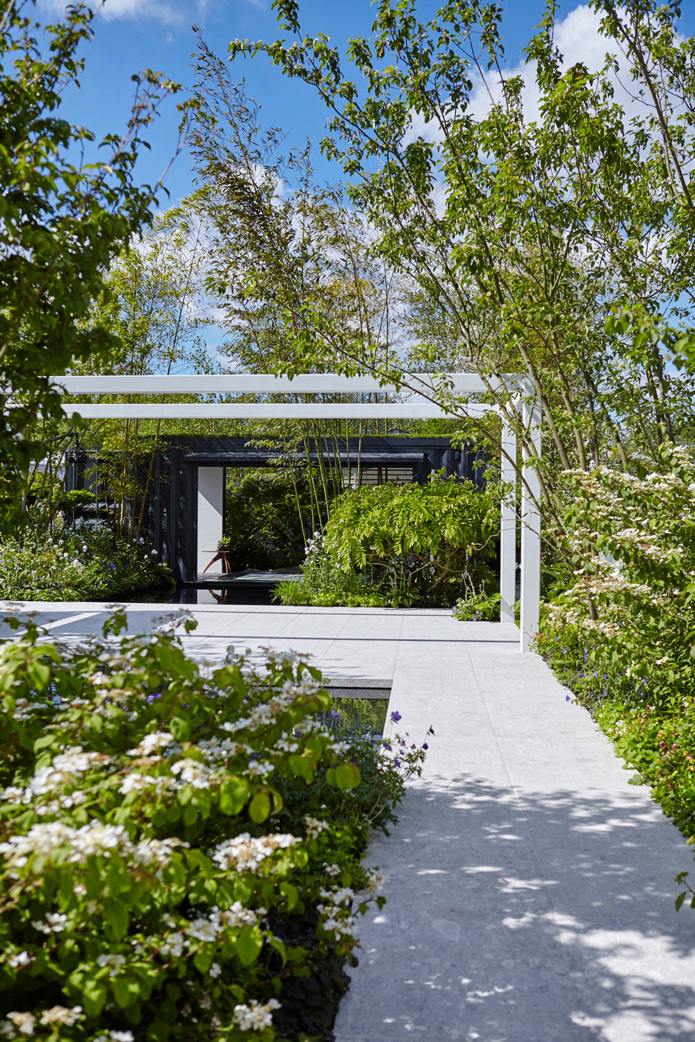 modern architecture garden design by airey spaces