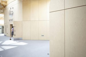 wooden panels in office space in WWF building by Airey Spaces