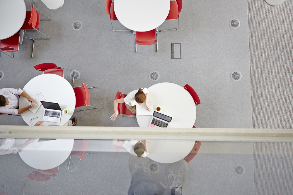 round tables in office space in WWF building by Airey Spaces