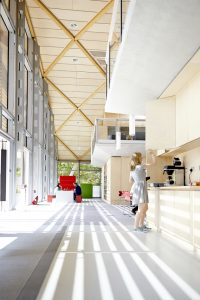 kitchen area of office space in WWF building by Airey Spaces