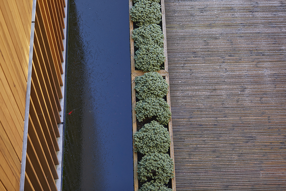 detail of wooden decking water planting and cladding on Alder Hey Hospital by Airey Spaces