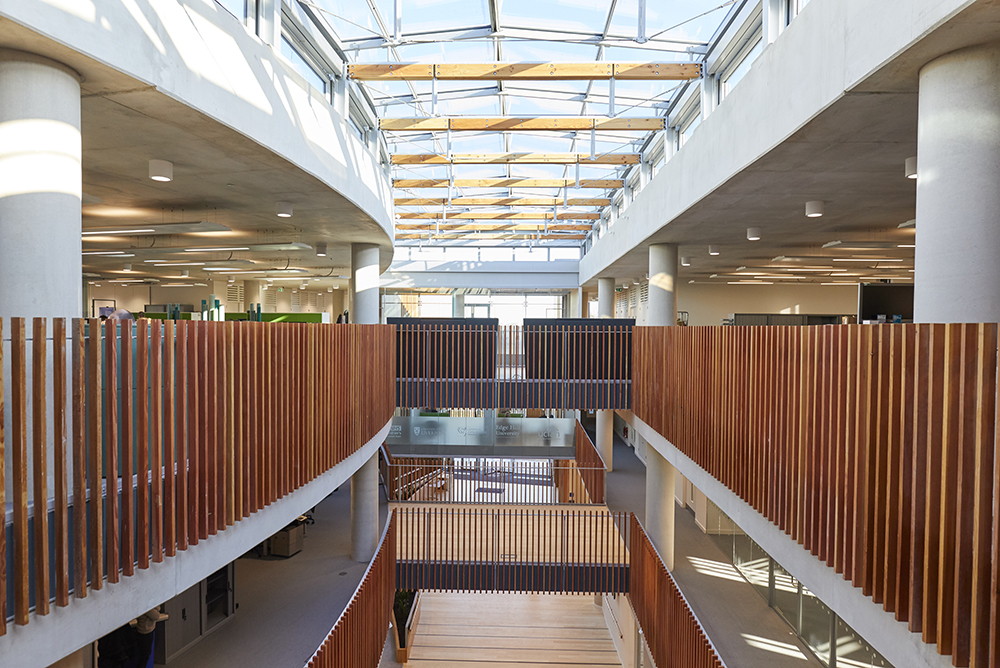 modern office interior with glass ceiling wooden features by Airey Spaces