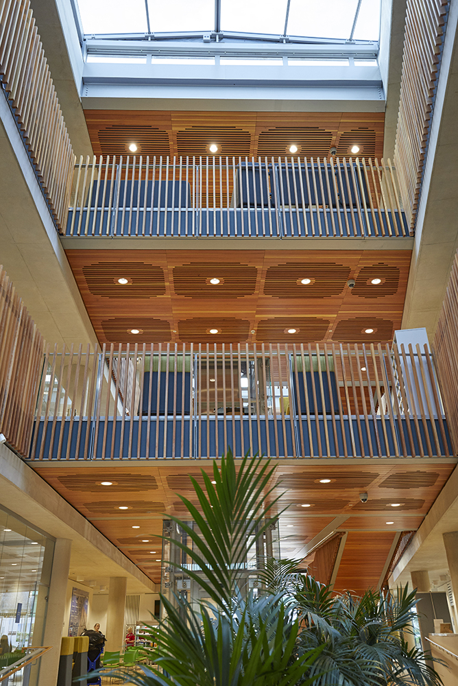 Wooden finishes office interior Aldery Hey Hospital architects Hopkins photographed by Airey Spaces